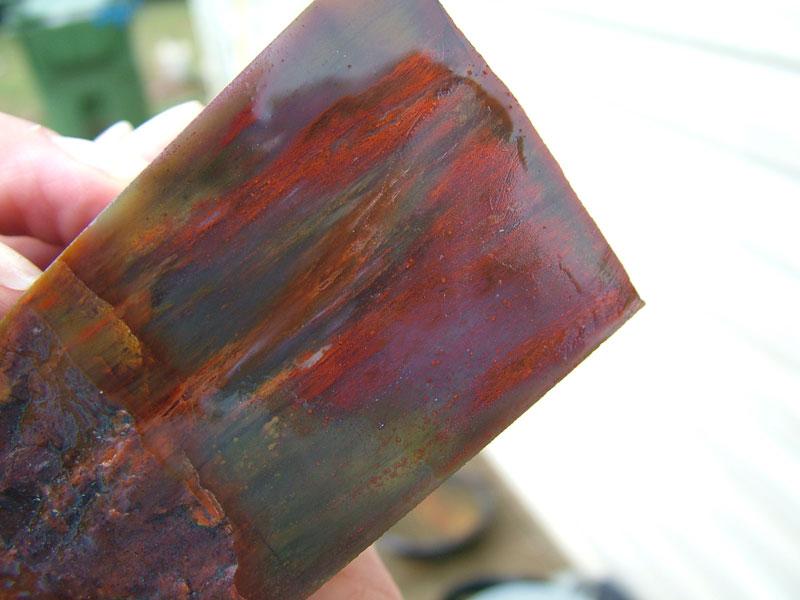 Agate And Arizona Rainbow Petrified Wood Photos