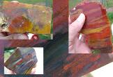 Arizona Rainbow Petrified wood for sale