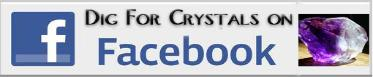 Visit the DIG FOR CRYSTALS page on facebook to bookmark and share with your friends!